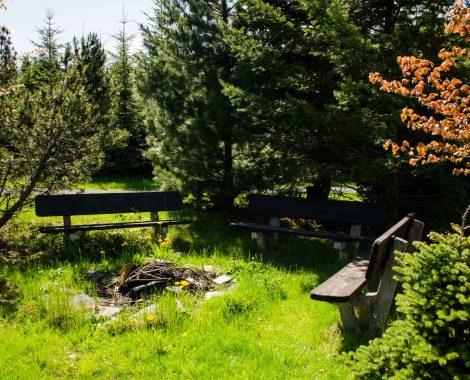 Campingplatz Muldenberg